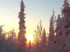 Lapland in Finland – a mysterious winter land of clear and cold Arctic air.