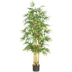 64 inch Bamboo Silk Tree, Green