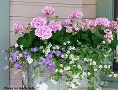 Flower Boxes for Porch Railings . Flower Boxes for Porch Railings . Part Sun Part Shade Window Box Flowers Pink Geranium, Geranium Flower, Deco Floral, Garden Cottage, Rose Cottage, Cottage Farmhouse, Farmhouse Design, Cottage Porch, Farmhouse Style