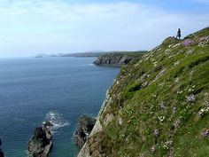 Pembrokeshire coastal path. Standing on the cliff looking down west to Ramsey Island.Re Pinned by Thousand Islands Expeditions