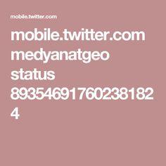 mobile.twitter.com medyanatgeo status 893546917602381824