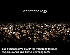 Studying cultural anthropology as my main subject.