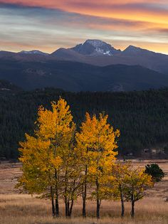 Longs Peak in the fall - Rocky Mountain National Park : Photography by Aaron Spong Colorado Plateau, State Of Colorado, Landscape Photography, Park Photography, Landscape Photos, Places Around The World, Around The Worlds, Photos Voyages, Rocky Mountains