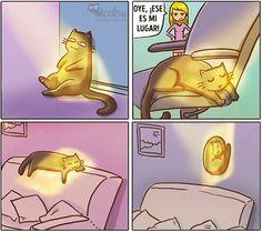 Cómic gato en casa un rayo de sol