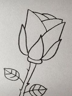 Rose Drawing Discover Drawing Rose Easy with A Pencil Easy Pencil Drawings, Easy Doodles Drawings, Easy Disney Drawings, Pencil Drawings Of Flowers, Easy Drawings Sketches, Space Drawings, Cute Easy Drawings, Cool Art Drawings, Simple Doodles