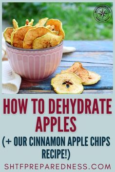 SHTF Preparedness wants to teach you how to dehydrate apples, as well as wanting to share with you a wonderful dehydrated apple and cinnamon chips recipe. Dehydrated food is perfect for long-term storage, backpacking, and of course, homestead survival. Whether you have a dehydrator or you want to use the oven to dehydrate your food, this post will show you the ropes. Check it out now. #homesteading #dehydratingfood #fooddehydrator #dehydratedapples Dehydrated Apples, Dehydrated Food, Cinnamon Apple Chips, Long Term Food Storage, Honeycrisp Apples, Apple Fruit, Dehydrator Recipes, Fruit Snacks, Apple Slices
