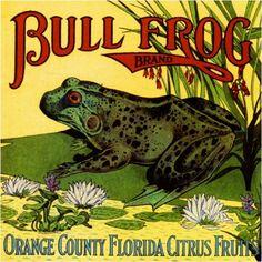 10x10 Orange County Florida Bull Frog Crate Label Art Print | eBay