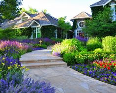 flagstone walkway steps gardern flowers front yard red flowers purple flowers blue flower yellow flower roof house of Denver Landscape Design: A Compliment For You House