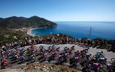 The peloton at Levanto along the Cinque Terre  Giro 2012