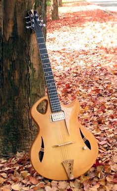 Outstanding example of Murray Kuun guitars. The autumn leaves, with the spitfire archtop jazz guitar