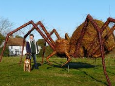 Artist Steve Manning of Topiary Art Designs makes custom and bespoke feature topiaries, willow, wicker and replica or artificial plant sculptures. Plus stainless steel topiary frames in any design. For gardens designers, landscapers, theme parks, civic amenities, exhibitions, garden shows and event promotions.     Suffolk based Topiary Art Designs supply products to Europe the USA and Worldwide.