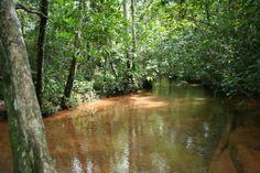 Rio Claro - Poço Azul