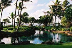Kuaui, Hawaii, my favorite island