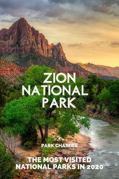 Millions of us enjoyed time in a national park in 2020. 237 million actually. Discover the list of the most visited national parks in 2020 including Zion National Park in Utah Smoky Mountain National Park, Joshua Tree National Park, Grand Teton National Park, Yellowstone National Park, National Park Passport, Most Visited National Parks, Passport Stamps, Best Hikes, Road Trips
