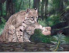Endangered Species Day art contest 9-12 grade category semi-finalist: Klaude Matias, Age 16, Ocelot, Texas ambrosia & Texas arena