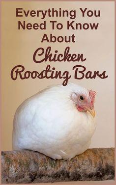 Chicken Roosting Bars