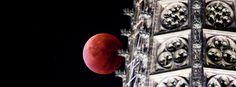 """""""Krwawy Księżyc"""" tak wyglądał na świecie"""