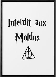 Poster Harry Potter «Interdit aux moldus»     L'Afficherie