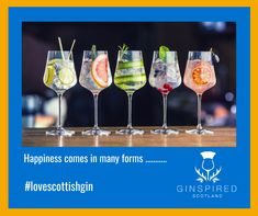 Have a look at our unique Gincyclopedia to see which Scottish Gin will be your happiness!
