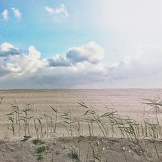 sunny.  #lagoadeobidos #oeste #portugal #p3top #gerador #oeste