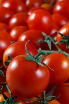 How to grow cherry tomatoes. They are great for small gardens and indoor gardening and take up less space than regular tomatoes while maturing quicker.