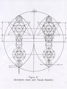 Mysteries of the Vitruvian Man | academysacredgeometry.com