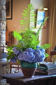 Two of my absolute favorites....ferns and hydrangeas; All Things Farmer
