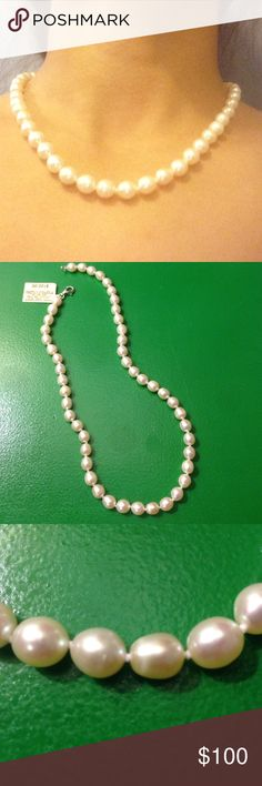 Authentic Pearl Necklace Stunning pearl necklace. Cream colored pearls. NWT from Macy's. Reasonable offers are welcome! Macy's Jewelry Necklaces