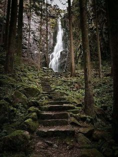 Stair Falls, Black Forest, Germany
