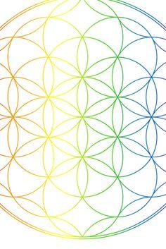 Deine Chakren - Reinigung, Stärkung und Schutz. Jedes der sieben Hauptchakren, steht für einen bestimmten Lebensbereich. Wenn alle Chakren einwandfrei und gleichmäßig arbeiten, fühlen wir uns gesund und zufrieden. Klicke auf den Pin und hole dir deine Meditation Meditation, Chakras, Lenses, Health, Gifts, Zen