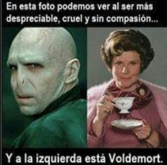 Harry Potter Tumblr, Mundo Harry Potter, Harry Potter Jokes, Harry Potter Fan Art, Harry Potter Fandom, Harry Potter World, Harry Ptter, Albus Severus Potter, Funny Spanish Memes