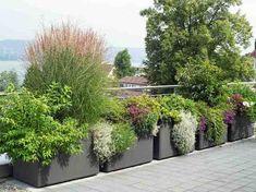 Garden pots and beautiful plants in the garden – new – Garden Care Garden Types, Jardim Natural, Landscape Design, Garden Design, Cement Flower Pots, Pot Jardin, Rooftop Garden, Natural Garden, Garden Planters