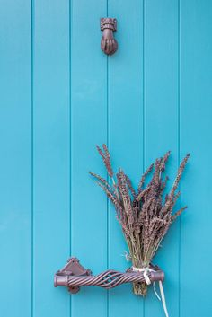About a year ago, an old building of 1858 was transformed into a olea traditional guesthouse that combines all contemporary comforts. Summer Dream, Old Building, Door Handles, Greece, Traditional, Contemporary, Flowers, Dreams, Country