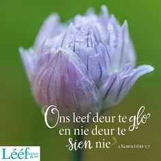 Love Me Quotes, Afrikaans, Happy Thoughts, Wise Words, Van, Blessings, Lisa, Bible, Think Happy Thoughts