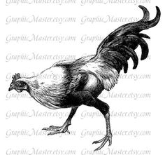Rooster Hen Farm Animals Vintage Digital Download by GraphicMaster