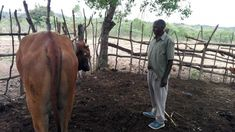 Sambia: Dorfsparvereine helfen Bauern aus der Klemme Poverty And Hunger, Kairo, Financial Inclusion, School Fees, African Proverb, Sustainable Development, Risk Management, Natural Disasters, Climate Change