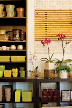 Style File: Orchid Mania   Utah Style & Design
