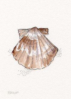Whelk Conch Shell Watercolor Black Ink by EricaDaleStrzepek