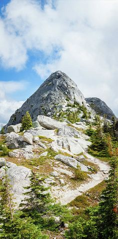 Needle Peak Summit. taken from the Needle Peak trail, Fraser Valley, BC, Canada