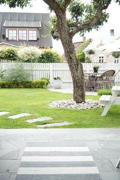 Omplantering i vår trädgård   Simplicity