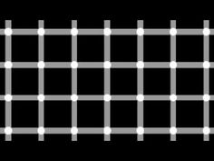 16 Optical Illusions That WILL Blow Your Mind !