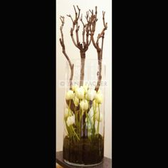 Jane Packer. I like the idea of doing something more vegative - not this as such, but maybe twisted willow coming out from planter
