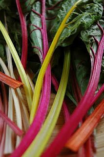 Meal on the Plate: Rainbow Chard