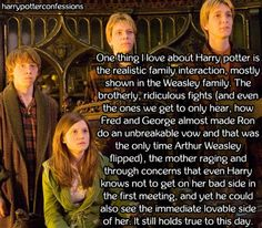 One thing I love about Harry potter is the realistic family...