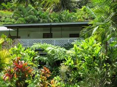 jardin luxuriant - Recherche Google