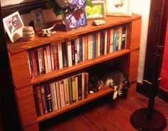 Expansion space in the new brick 'n' plank bookcase promptly taken up by a cat. Cinder Block Shelves, Cozy Apartment, Humble Abode, Plank, Brick, Bookcase, Furniture, Decoration, Heart