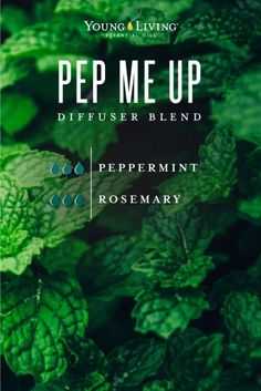 If you're like most of us at Young Living, Peppermint essential oil is already one of your favourites. Here are 20 uses for Peppermint essential oil to try! Essential Oil Diffuser Blends, Doterra Essential Oils, Doterra Blends, Yl Oils, Young Living Oils, Young Living Essential Oils, Aromatherapy Oils, Diffuser Recipes, Peppermint