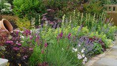 [Harmonious Planting Schemes] Planting Schemes   Landscape Garden Designers, Reading, Berkshire   Pete Sims