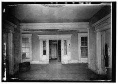 Inside plantation.