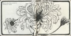 Mums the Word, Zentangle Inspired Art by Sharla R. Hicks CZT, via Flickr